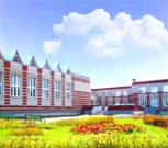 Новошешминск и Новошешминский район