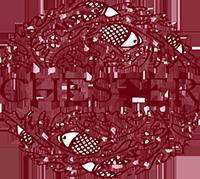 ЧЕСТЕР, логотип