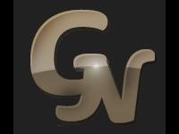САЛОН КРАСОТЫ ГАЛИНЫ НУЧЕВОЙ, логотип